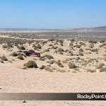 desert-races-ADRA-125-17 ADRA 125 Desert Races in Puerto Peñasco!