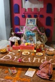 Cobach-Altares-2013 (12)