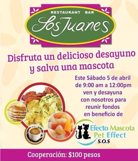 desayuno-peteffect Pet Effect fundraiser Breakfast