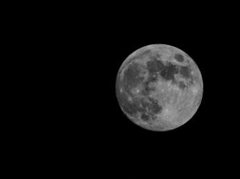 luna-ariel-gonzalez