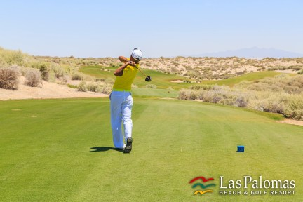 Luis-torresswing Nuevo director de golf en The Links