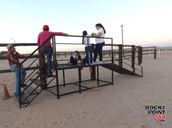 equine-therapy-5-630x472 La equinoterapia en Puerto Peñasco nace de una pasión por los caballos