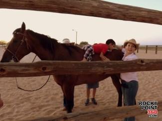 equine-therapy-7-630x472 ¡Buen Fin!  Rocky Point Weekend Rundown