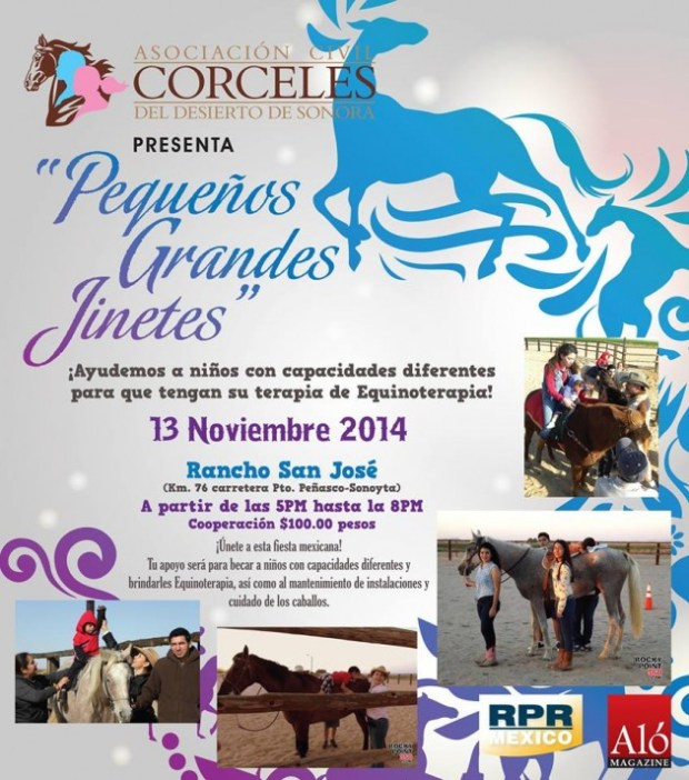 corceles-nov13-630x714 Small Great Riders  - Equine Therapy Event Nov 13