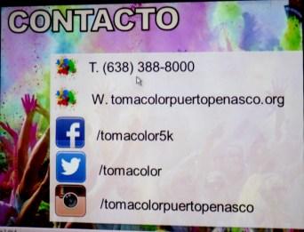 toma color-2015 (4)