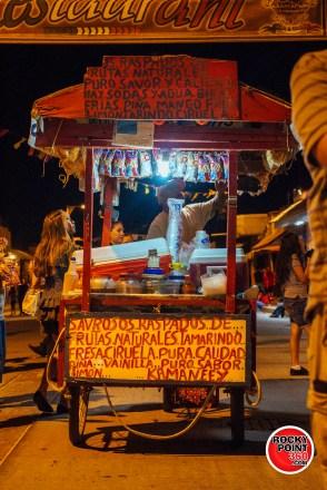 Altares-y-catrinas-2015-019