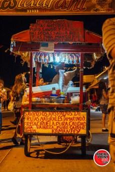 Altares-y-catrinas-2015-019 Altares y Catrinas 2015