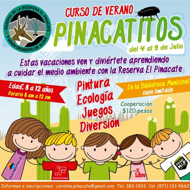 pinacate-camp ¡Hello, summer! Rocky Point Father's Day Weekend Rundown!