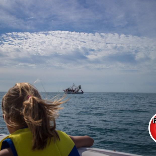 DelMarCharters-10 Don't wear a dress on a speed boat: Venture to Bird Island (Part III)
