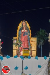 dia de la virgen de guadalupe puerto peñasco (2)