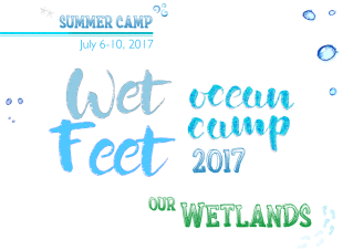 cedo-wetfeet-1200x849 Honoring lives at sea - Rocky Point Weekend Rundown!