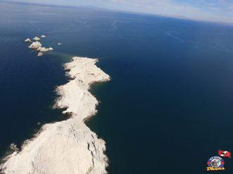 rp-divers-bird-island Sand! Sun! Summer! Rocky Point Weekend Rundown