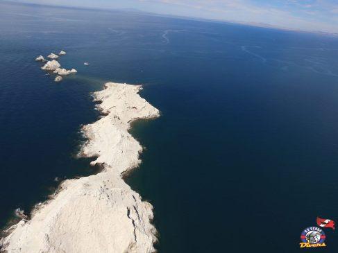 rp-divers-bird-island ¡Vamos Gallo!  Rocky Point Weekend Rundown