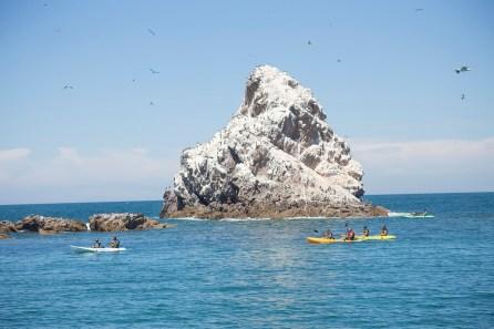 Bird-island-ecofun-tours Take a breath. Rocky Point Weekend Rundown!