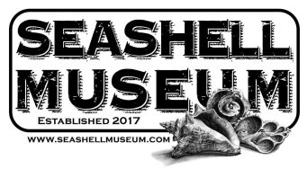 seashell-museum-2018-1200x660 Let's go Down Together! Rocky Point Weekend Rundown!