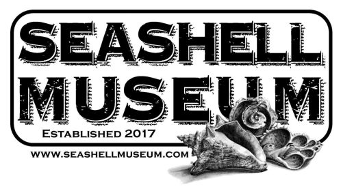 seashell-museum-2018-1200x660 The (Friday) Seashell Museum