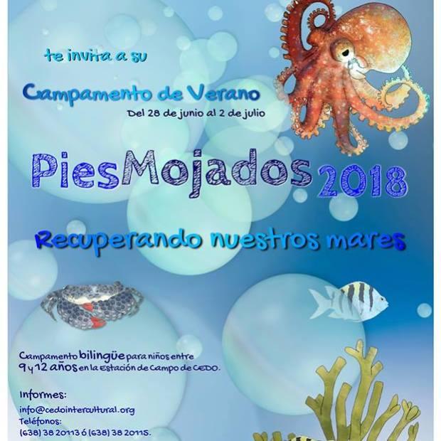 Pies-Mojados ¡Campamentos de verano 2018 en Puerto Peñasco!