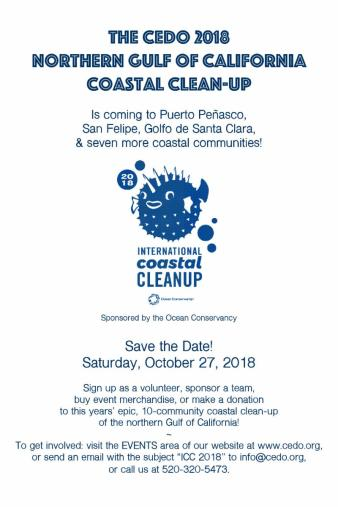 cedo-clean-up-oct-27 Summer's not over! Rocky Point Weekend Rundown!