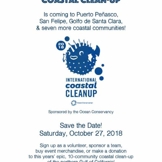 cedo-clean-up-oct-27 Welcome, October! Rocky Point Weekend Rundown!
