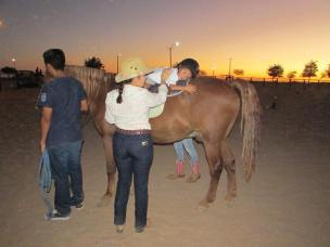 equino-foto Culture & tradition Rocky Point Weekend Rundown!