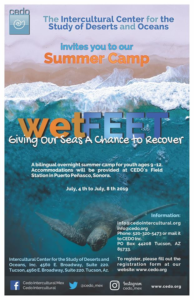 wet-feet-camp-2019 Let's get Funky! Rocky Point Weekend Rundown!