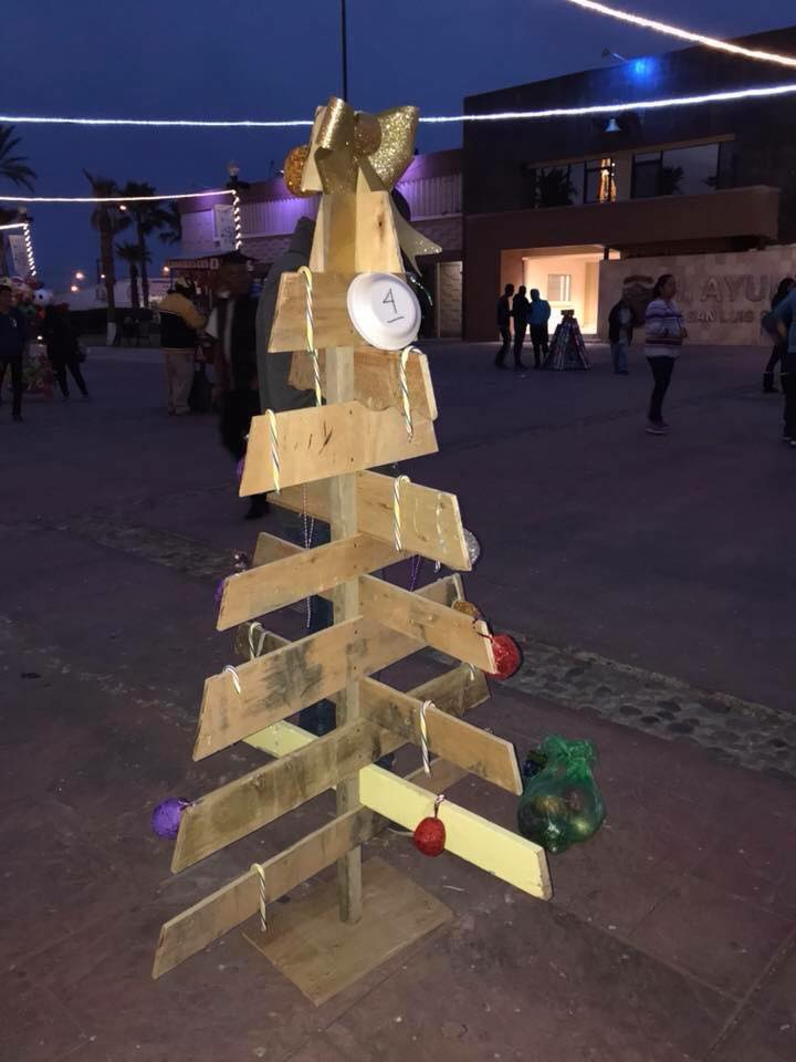 1 2019 Contest for Christmas Trees made from recycled materials