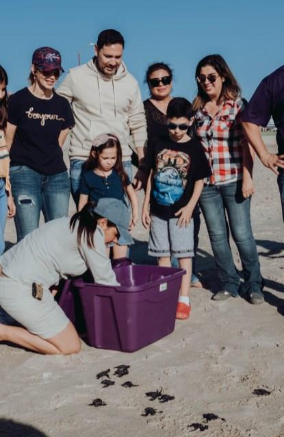 tortugas-turtles-nov-2019-6 Fall baby sea turtles release
