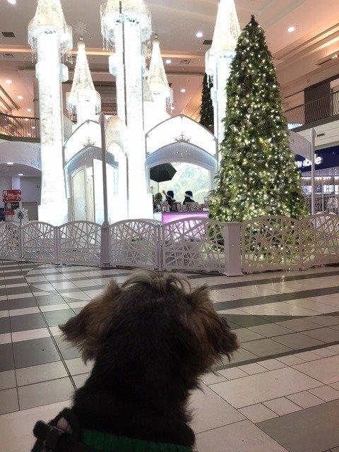 christmas mall