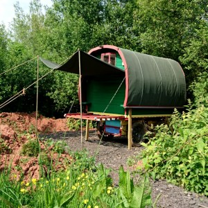 Gipsy Caravan | Glamping, Devon