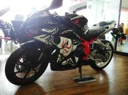 cbr250rr kabuki (1)