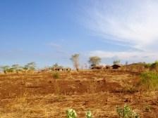 SANORD 2013 Malawi17