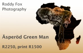 Äsperöd Green Man Price