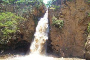 Lake Nakuru National Park (113)