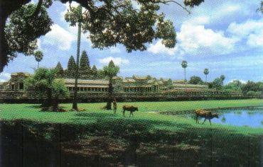 Angkor Wat 18