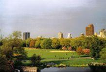 Central Park 19