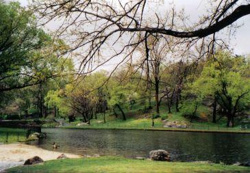 Central Park 24