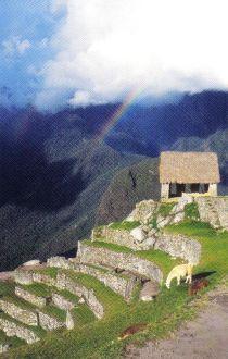 Macchu Picchu 12