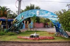 Puerto Ayora (2)