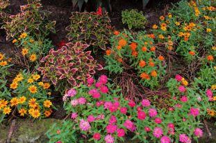 botanical-garden-33