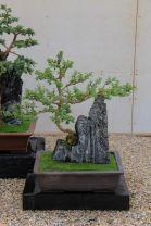 kurakuen-garden-90