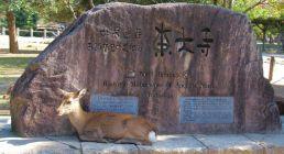 todai-ji-temple-3