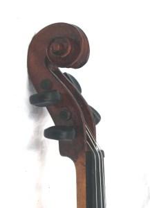fiddle pegbox