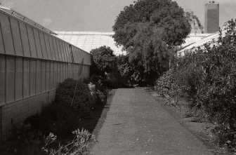 2009-08-14st-andrews012
