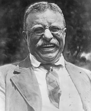 teddy roosevelt,Stephen Rodgers, Stephen Rodgers Counseling of Denver, Stephen Rodgers Counseling, counselors in Denver for men, therapists for men in Denver, looking for a counselor, how to find a therapist, men's issues, depression in men, anxiety in men, happiness, depression, anger, anger problems, how to deal with my anger problems, I feel hopeless, I feel like giving up, my family hates me, I made a big mistake, how to recover from a divorce, how to deal with an angry ex-wife, I can't perform anymore, Sondermind, National Association of Social Workers, family therapy, art therapy for kids in Denver, child psychologist, child therapist, help with my relationship, how can I fix my relationship, I feel like there is no point, panic attacks, how to deal with anxiety, fear. trauma, PTSD, dealing with PTSD, help for veterans with PTSD, therapist in Denver for PTSD, behavioral issues with my child, my child is acting out, sexual abuse, sexual trauma, sexual assault, dealing with rape, learning disabilities, help with learning disabilities, divorce, separation, dealing with divorce, dealing with separation, dealing with grief and loss, dealing with grief, dealing with loss, the steps of grief, widowhood, widow, death, death of a child, family discord, mental health, mental illness, wellness, therapy, Denver therapy practices, impotence, dealing with impotence, Viagra, losing my kids in custody battle, losing my hair, balding, money problems, losing my job, scared I might lose my family, scared I might lose my job, what is therapy like, I think my child needs therapy, 50 Steele Street, Suite #950, Denver, Colorado, services, faq, men, father-son, olympics