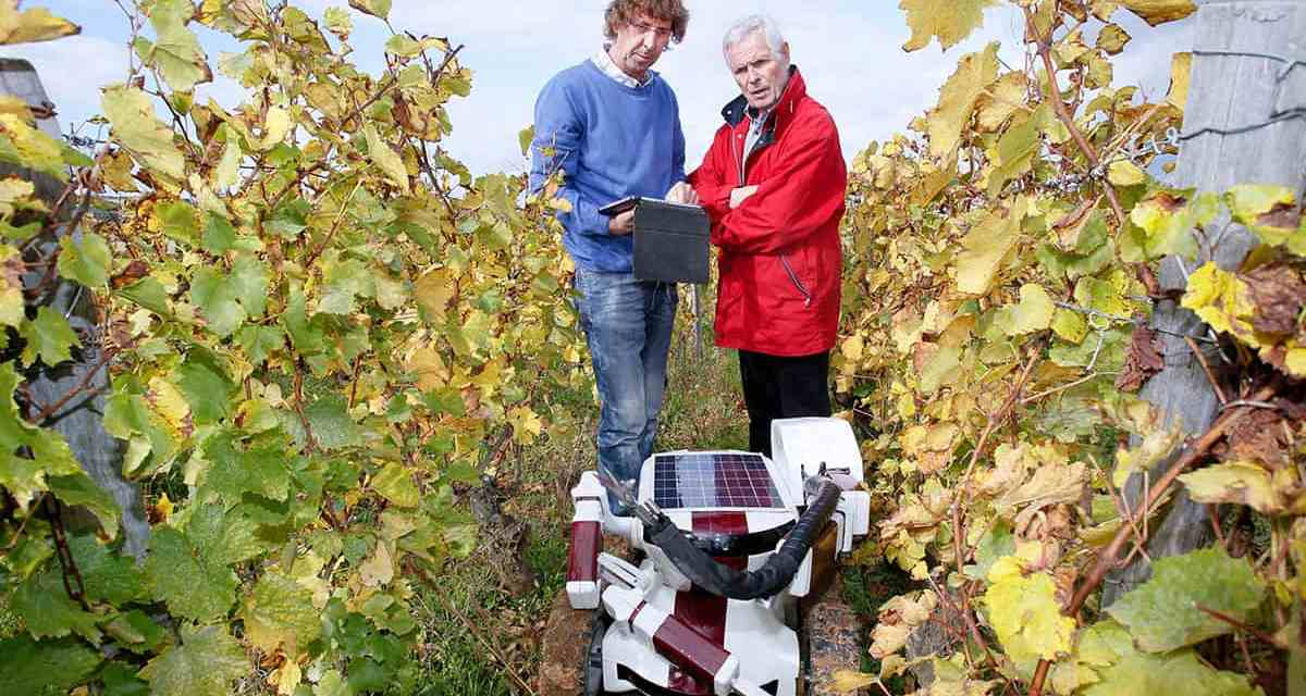 Farmer of the Future: R2-D2?