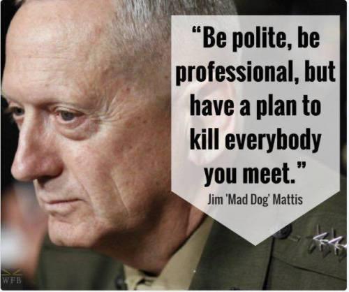 Retired Marine Mad Dog Mattis