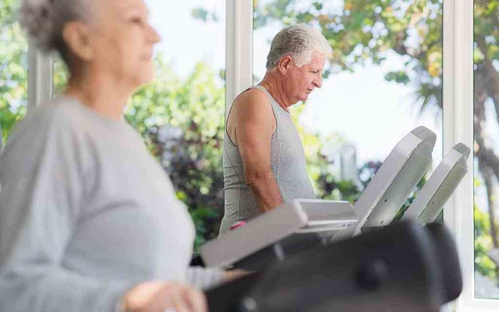 Preventing Alzheimer's by Treating Obesity