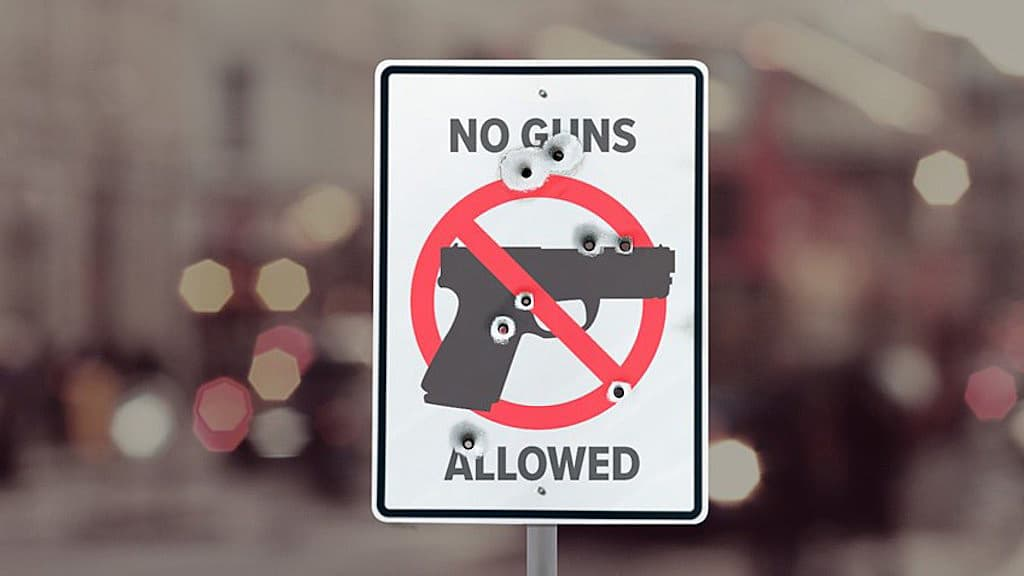When Gun Control Fails