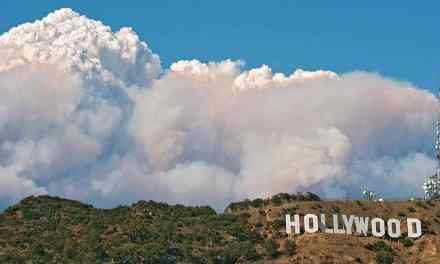 What the Collapse of Hollywood Credibility Has To Do with Biotech