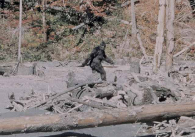 Bigfoot, UFO's, Sandra Bland, and Police Brutality